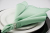 Rental store for Napkin, Seafoam Green in Saskatoon SK
