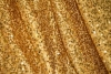 Rental store for Curtain, Sequin Gold 10  x 5 in Saskatoon SK